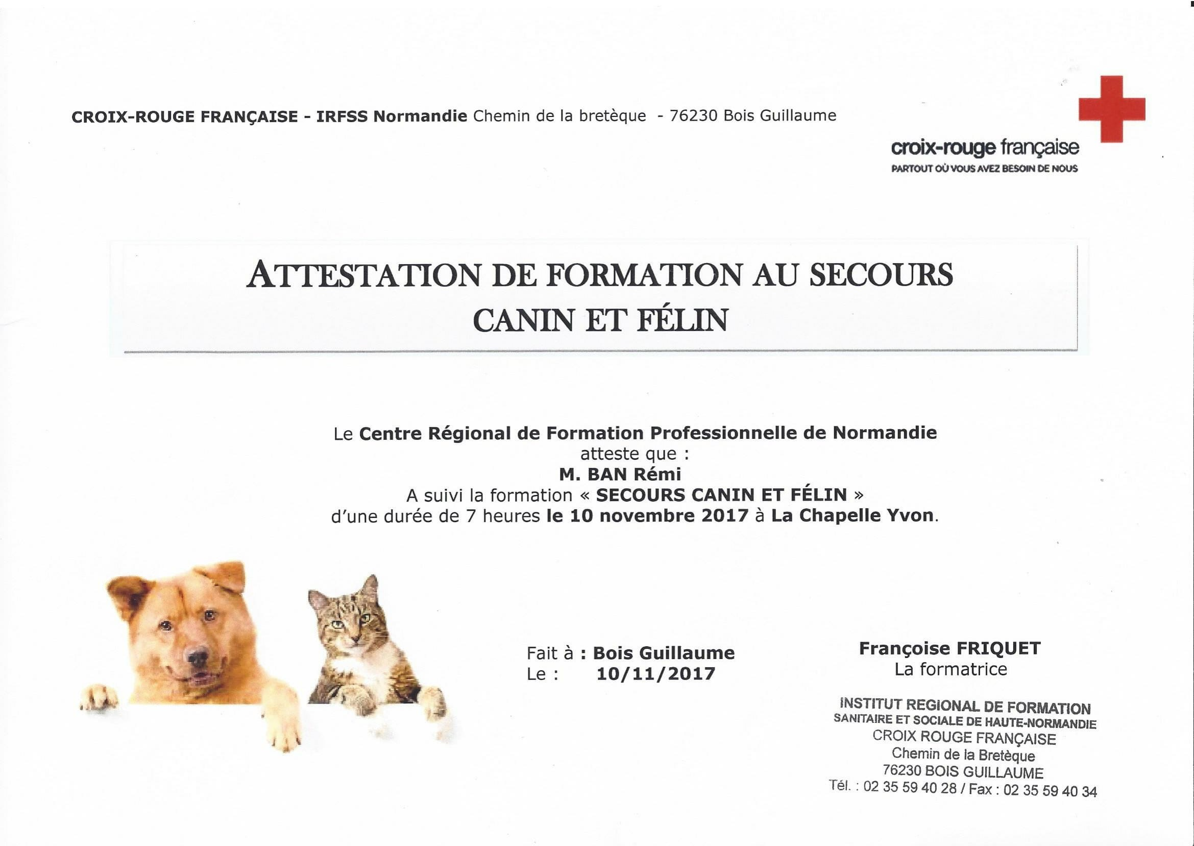 Attestation de secourisme canin